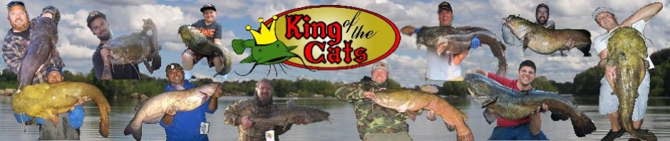 Catfish Lengthgirth Chart King Of The Cats
